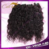 Rosa Hair Products Peruvian Virgin Hair Water Wave Unprocessed Virgin Peruvian Water Wave Hair 4pcs/Lot Natural Human Wavy Hair