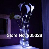 Freeship IP68 5Meters Valentine's day wave point lights wedding LED Holiday Lights DIY lamp copper LED String Decoration Light