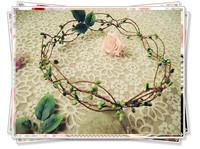 Free shipping fresh brief all-match green vine cane plant garland berry wreath pure fresh female necessary wedding photo props