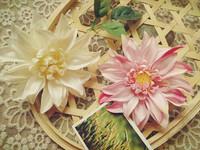 Free shipping artificial Dahlia flower hairpin bride bridal headdress headwear Photo studio Bali beach honeymoon trip