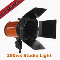 Godox elf 250ws Studio Photographic Lights Flash Light Studio Photographic Equipment