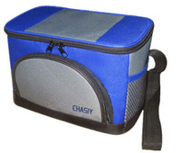 Car home dual ice pack / passive mini car fridge / cooler box