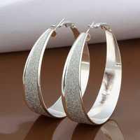 Free Shipping Wholesale 925 Sterling Silver Earring,925 Silver Fashion Jewelry,New Style Earrings SMTE479
