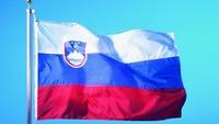 Free Shipping Wholesale and Retail NEW 100% Polyester Printed 4# 96*144cm Slovenia SI Slovene  Slovenia Ljubljana Flag Banner