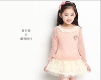 free shipping new arrival spring 2014 child long-sleeve dress spring lace dress princess spring clothes children's clothing