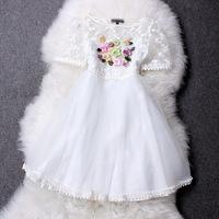 2014 New Fashion Women Summer Dresses Women's Embroidered Guaze Meash Short-sleeve Empire Waist High Street One-piece Dress