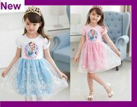 2014 Princess Dresses baby & kids summer Girl Dress Children girls' Clothing Elsa Frozen Dress Elsa Dress For Girl new