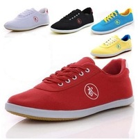 Binary authentic professional tai chi shoes sneakers men's shoes for women's shoes supply with martial arts, kung fu shoes