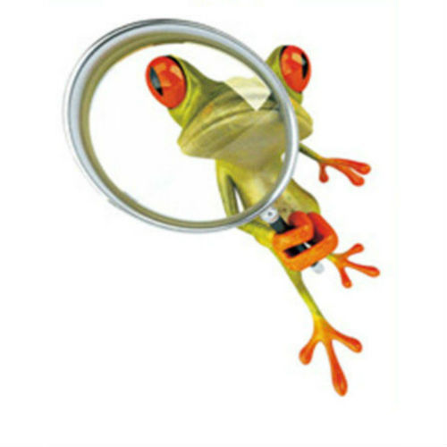 Very Best Cute Green Frog Stickers 500 x 500 · 24 kB · jpeg