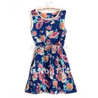 2014 Summer Wholesale Clothing Women Casual Beach Sleeveless Chiffon Flower Print Vintage Mini Dresses 1105