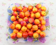 60 pces muito frutas artificiais de espuma pequeno mini romã frutas falso pequeno adereços romã romã modelo brinquedo transporte livre(China (Mainland))