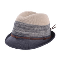 New 2014 Summer fashion Straw Fedora Hat for women Sun protection Chapeu Beach Straw Trilby Hat