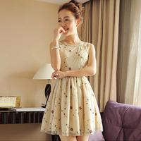 Korean Fashion Elegant Dress New 2014 Summer Spring Mesh Lace Flower Print Women's Casual Vintage Tops Dress Girl Sexy Vestidos