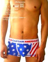 Free shipping High Quality Cotton Men's Boxers Men's Underwear cuecas boxer C-356