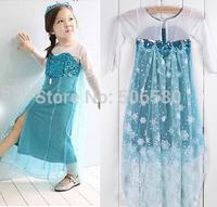 5pcs/lot New Frozen Queen Girl Elsa Coronation Dressing Princess TUTU Dress For 3-7 Year Kid Girl,wholesale