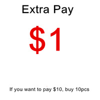 $1 extra payment