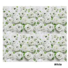 white flower head promotion