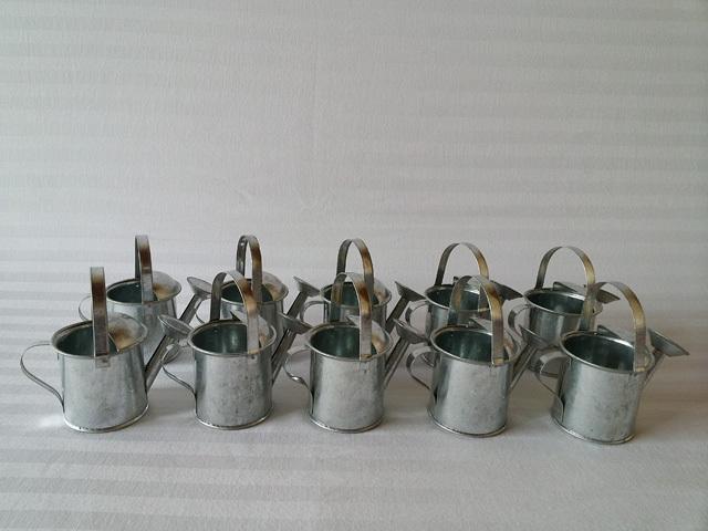 mini jardim oriental:Small Watering Can Flower Pot