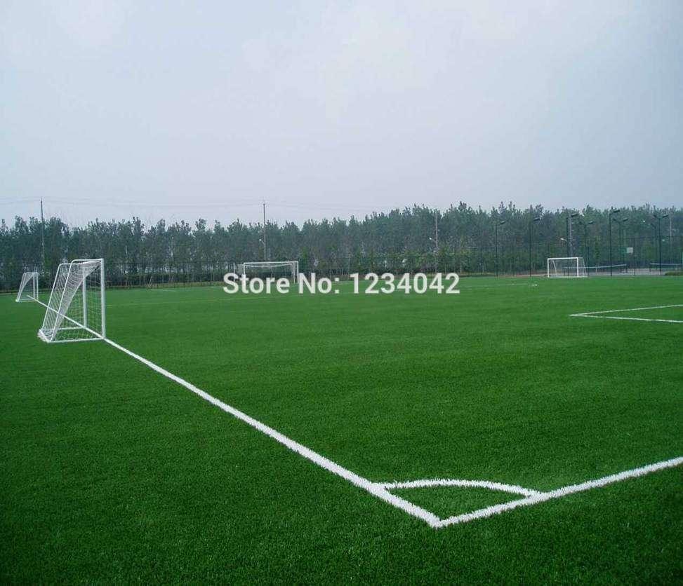 Green Source Turfgrass Grass Seeds , Golf, Soccer Fields, Villa, Special grade Evergreen Lawn Seeds 2000 Seeds / Bag(China (Mainland))