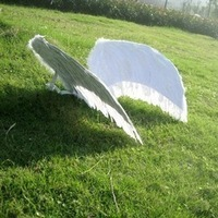hot selling for adult party angel feather wings,festival party costumes decoration 4 colors size biggest 150*120CM