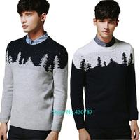 Woolen sweater 2014 autumn winter men's high quality wool sweater fashion men's sweater