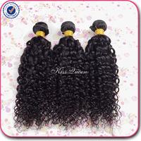 Brazilian virgin hair water wave virgin hair 3 pcs lot free shipping 5A unprocessed virgin brazilian water wave human hair weave
