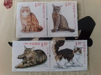 Lovely Animal Cats , 4 Pieces ,New Chinese Postage Stamps Collecting