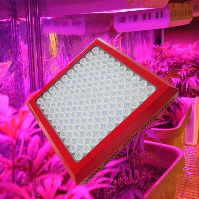 Envío gratis 9- bandas 300w led crece la luz de alta potencia de concha roja crecen la lámpara de efecto invernadero para crecer caja dropshipping