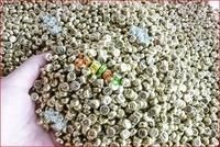 200pcs mixed acylic coin letter beads 4x7mm.