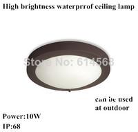 10w Outdoor waterproof ceiling lamp bulkhead lamp bathroom ceiling lights IP68