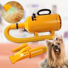 Cat Dog Pet Grooming secador Blaster Secador de Cabelo 2400W Entregar da Alemanha(China (Mainland))