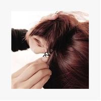 Spiral Hairdisk hair styling hairpin Dish hair tools