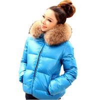 2014 New Fashion Women Hoodies Down Parkas Jacket Winter Outerwear Light Color Heavy Fur Hoddies Free Shipping WPW064
