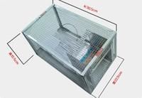 dog cage cat get mouse,mouse cage,aquarium fish mice,wildlife mousetrap