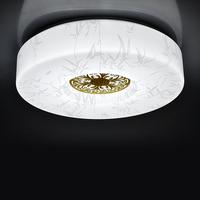 LED Ceiling modern minimalist living room bedroom balcony walkway lighting fixtures dining room den