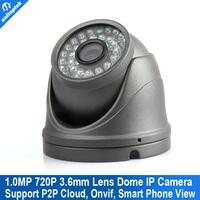 Free shipping 1.0MP Mini Dome IP Camera 720P HD ,IR Night Vision ip cam,Onvif P2P Plug Play CCTV Security camara,Free Phone view