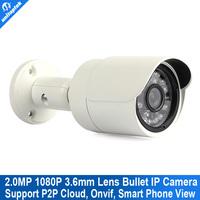 2.0 Megapixel Onvif 2.3 Network Outdoor mini 1080P IP Camera P2P Cloud Easy Visit 1920*1080 Internet Camera