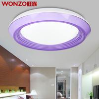 Free Shipping 41CM led ceiling lamp modern minimalist restaurant lights round creative bedroom balcony aisle lights lamps