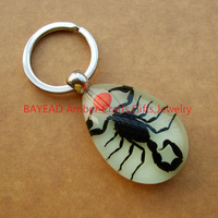Real insect Black Scorpion In Glow Amber Keychain Promotion Gift Novel Gift Novel Souvenir School Gift Free Shipping