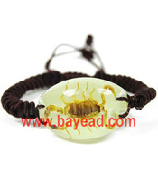Fashionable Insect Amber Bracelet Jewellery(glow-in-dark),Promotion Gift,novel gift,novel souvenir,Free Shipping