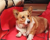 136*136 cm Pet car mats car dog mat backseat waterproof car protection pad,  picnic mat 2 Colors C3-o