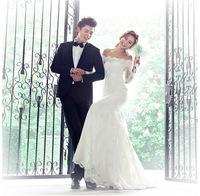 Princess Bride Korean off shoulder lace long-sleeved Slim trailing fishtail lace wedding dress 2015 newest  bridal dress