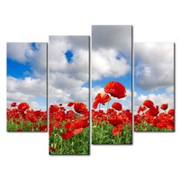 3 Piece Red Wall Art Painting Poppy Field Under The Cloud And Blue Sky  Picture Print On Canvas Flower 4 5 The Picture