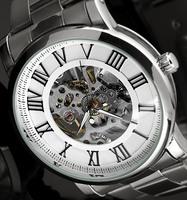 Skeleton watches for men full steel watch Mechanical Watch Hand Wind analog round wristwatches