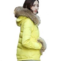 6015 2014 New Fashion women winter jacket Long Style Large fur collar Zipper Slim Thicken Hooded coat Women duck down jacket