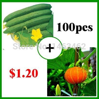 Карликовое дерево Seeds vegetables ! 80pcs 20