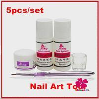 New Pro 5pcs/set Nail Art Acrystal Powder Pen Brush Professional Acrylic System Brush Cleaner Wash Nail Liquid DIY Nail Set Tool