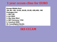 EURO Stable server cccam cline account  work  for  Spain  canal +  sky de, sky it SD channels  cheapest  no test before order