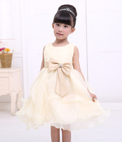 New hot baby girl clothes girl dress champagne evening dress sweet style dress, inventory 90-130
