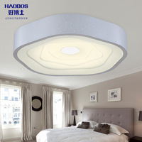45X45CM 24W  Modern minimalist bedroom lamp led ceiling remote creative living room , wrought iron art lighting fixtures